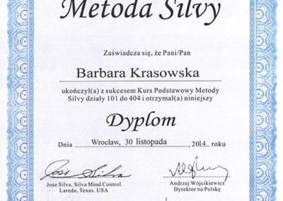 Dyplom Metoda Silvy